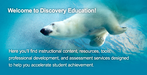 Polar Bear Diving: Welcome to Discovery Education -- Here you'll find instructional content, resources, tools, professional development, and assessment services designed to help you accelerate student achievement.